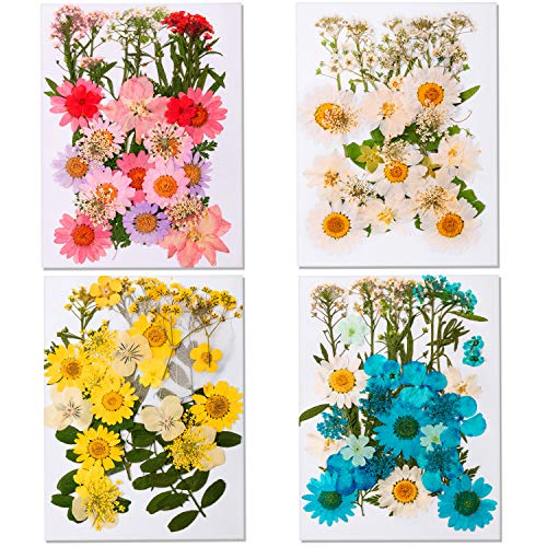 139 Pieces Dried Pressed Flowers Natural Dried Flowers Colorful Pressed Flowers Daisies Real Dried Flowers Leaves Petals for DIY Candle Jewelry Nail Pendant Crafts Making Art Decors