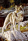 DIYCCY 119708 - Bandera Decorativa de Jardín Pequeño, Diseño de Lobo de Coraje (12,5 x 18...