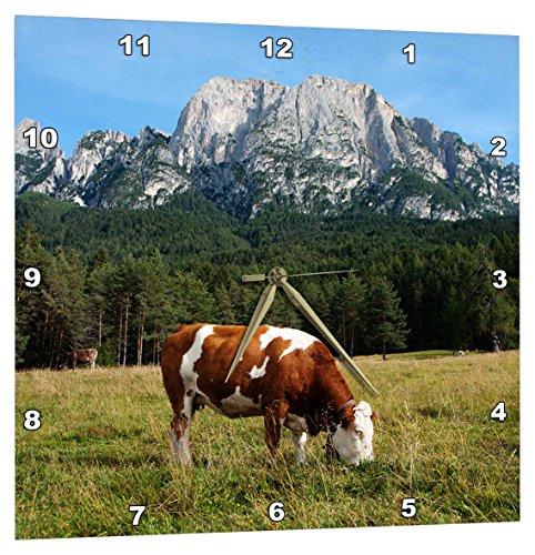 3dRose Simmental Cow Grazing - Wall Clock, 13 by 13-Inch (DPP_165722_2)