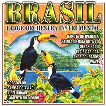 Brasil-Instrumental
