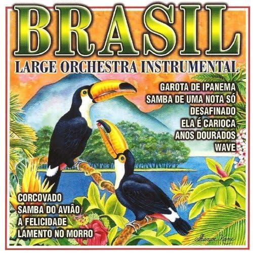 Large Orchestra Instrumental