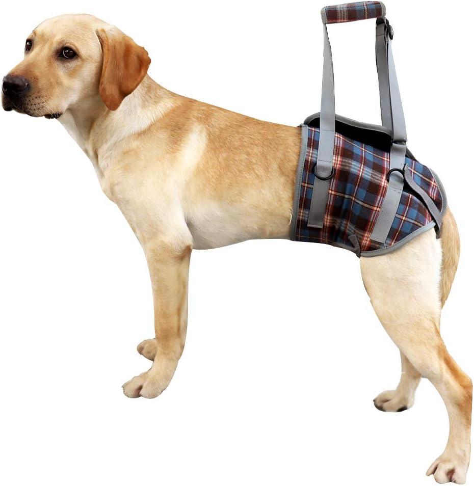 Arnés de Soporte para Perros para piernas Delanteras y traseras Chaleco de rehabilitación de elevación Malla Ajustable Acolchada con asa para Perros discapacitados débiles