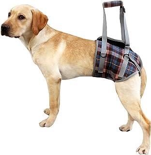 Harnais de soutien pour chien pour les jambes avant et arrière levage gilet de réadaptation réglable maille portable rembo...