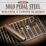 Solo Pedal Steel: Wilco's Ghost Is Born