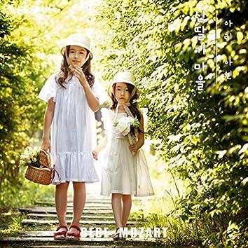 Ari&Ayine's raspberry village