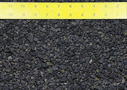 2 Gal. -1/16' to 1/2' Horticultural Black Lava for Cactus, Bonsai Tree Soil Mix