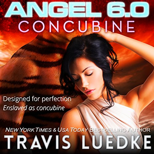 Angel 6.0: Concubine cover art