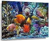 GYJDD Lienzos Decorativos Peces Arrecife De Coral Colorido Acuario póster Pared Art Deco Cuadros e Impresiones Pintura s Cuadros Cocina Pared Lienzo60x90cm x1 Sin Marco