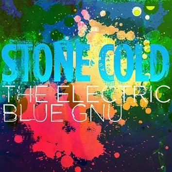 The Electric Blue Gnu - Live