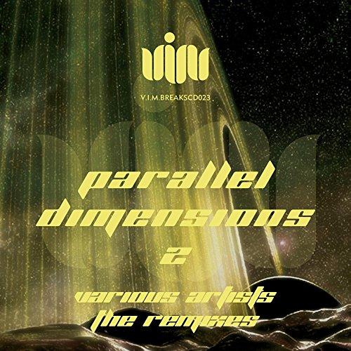 Paradigm Shift (Vectrix Remix)