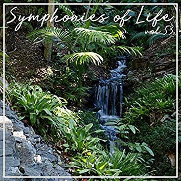 Symphonies of Life, Vol. 53 - Gershwin: Rhapsody in Blue, Concerto, An American in Paris