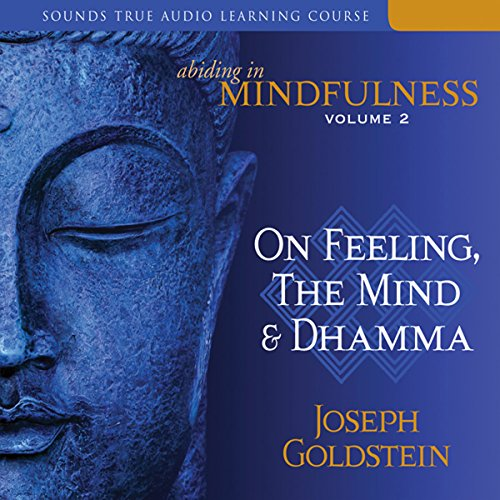 Abiding in Mindfulness, Volume 2: On Feeling, the Mind, and Dhamma