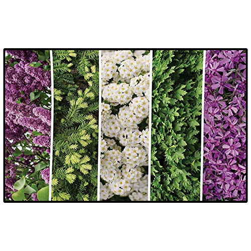 Flower Christmas Bathroom Rugs Patio Rugs Collage Mix Diverse Herbs and Blossoming Bouquet Flowers Romantic Wedding Concept Desk mat for Carpet Green Violet 6.5 x 9.8 Ft