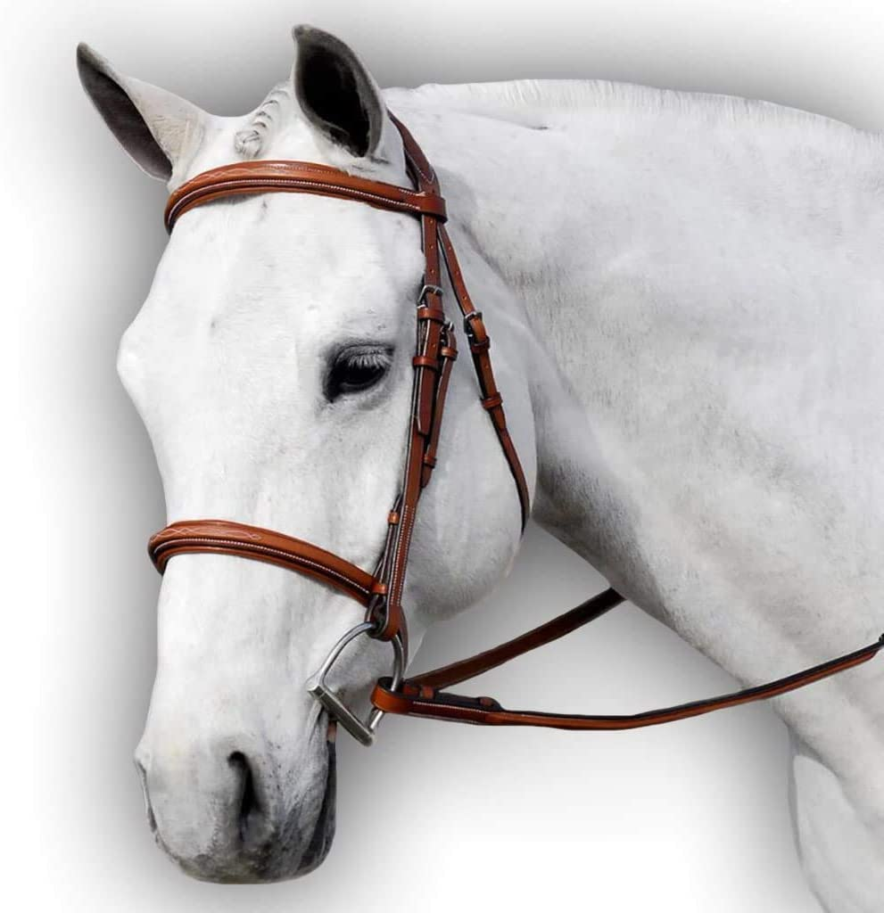 Free Shipping Cheap Bargain Gift Flat Padded Leather Horse price Bridle Cut The Ba with