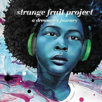 A Dreamer's Journey