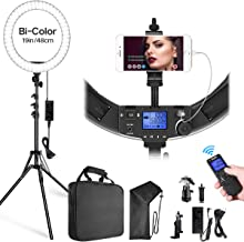 Switti Ring Light, 19 inch LED Ring Lights with Stand and Phone Holder, 60W Bi-Color 3000K-5800K CRI TLCI=99 Circle Light for YouTube, Facebook Live, Makeup, Blogging