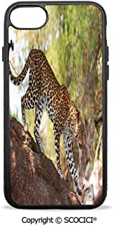 SCOCICI Non-Slip Drop Protection Smart Cell Phone Case Leopard Panthera Pantus on Tree Nature Reserve Botswana Carnivore Animal Decorative Compatible with iPhone 8 Plus