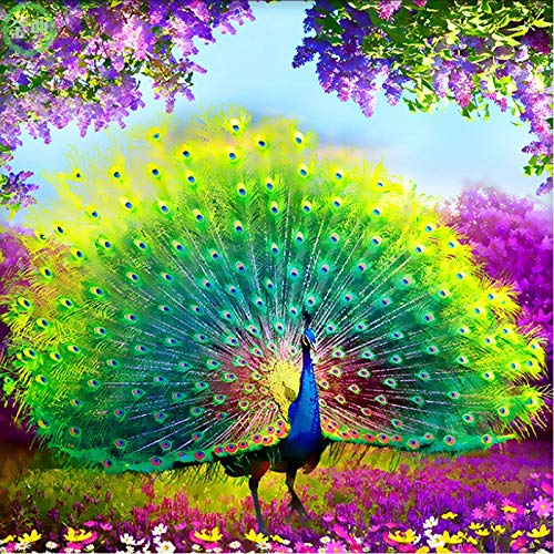 5D DIY Diamant-Malerei, Peacock Eröffnung Bildschirm, voller Diamant-Stickerei Gemälde, voller Diamant Dekorative Malerei ohne Grenzen, Eltern-Kind-Aktivitäten, Hauptdekoration ( Größe : 40*40cm )