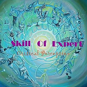 Skill Of Expert