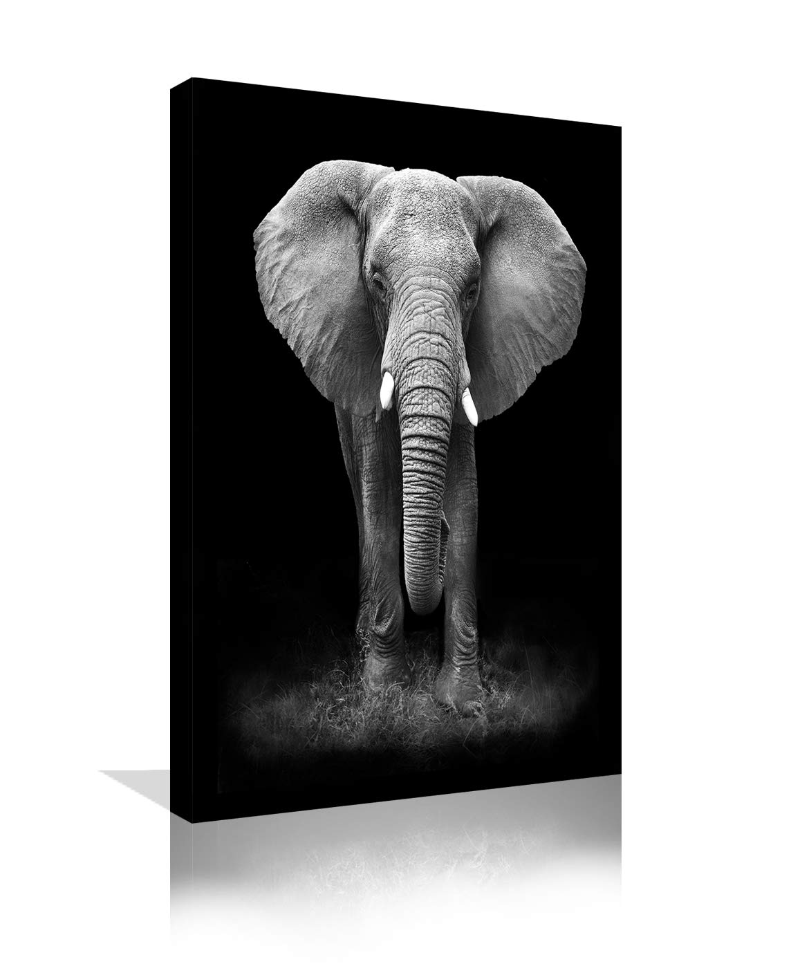 Urttiiyy Black And White Elephant Wall A Buy Online In Guernsey At Desertcart