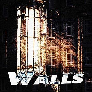 Walls (feat. Gal Hornstein, Ambrose Newton, Tarjei Skarlund & Brian Henry)
