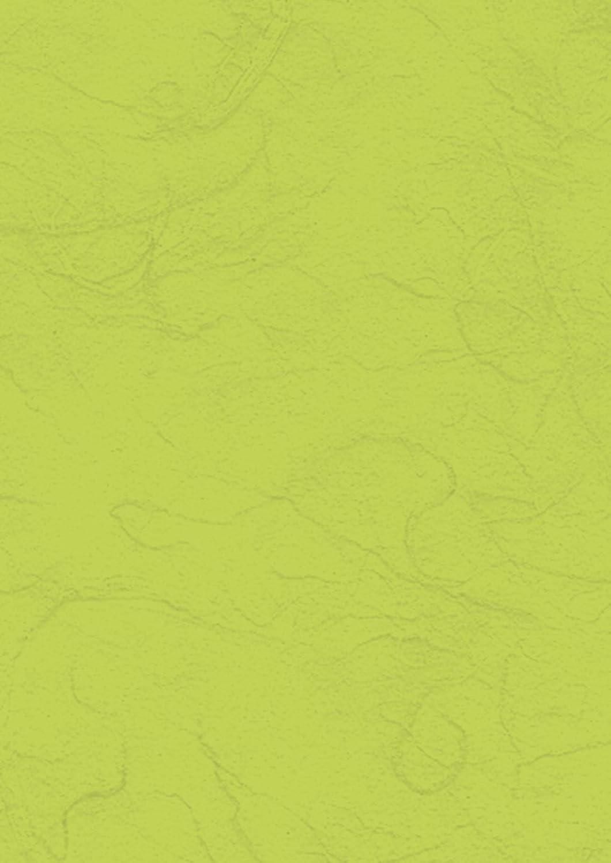 Baier & Schneider Japan-Faserpapier Strohseide, Strohseide, Strohseide, 25 g m, 500 x 700 mm, VE = 25 Bogen Blatt B001QPNVTU | Good Design  b75691