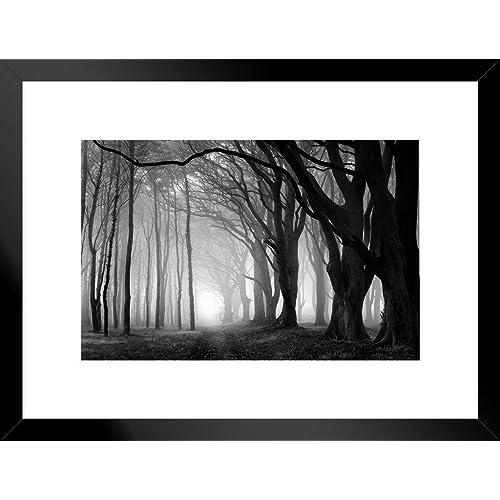 Black And White Framed Prints Amazoncom