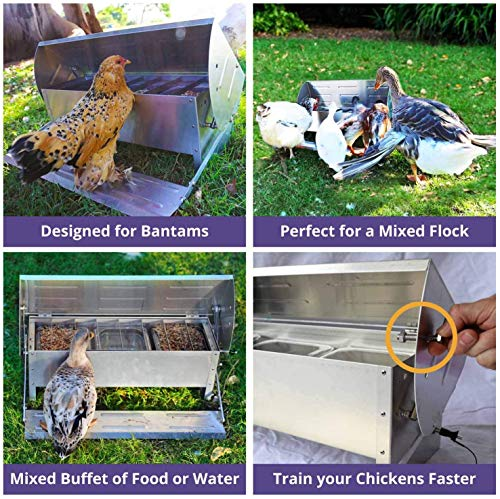 Happy Henhouse Automatic Chicken Feeder, Patented Soft-Close Lid, Waterer Treats Weather Proof Rodent Proof 20 LBS Capacity