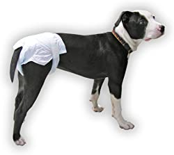 Disposable Diapers for Pets - Package of 10 for Dogs and Cats