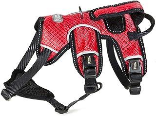Syst/ème dattache sur ceinture de s/écurit/é universel avec mousqueton Adapt/é pour chiens de grande taille Taille: L Rouge Enhanced Strength Tru-Fit Taille ajustable Kurgo Harnais de s/écurit/é pour chien