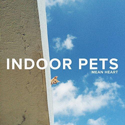 Indoor Pets
