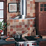 Broan-NuTone RM519004 Elite Rangemaster Wall-Mounted Chimney Range Hood, Stainless Steel