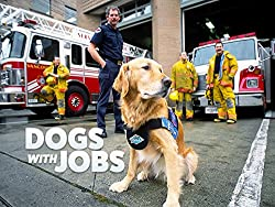 Image: Dogs with Jobs TV Show | jobs include everything from acting, herding sheep, providing mental and physical therapy, working with fire and police departments