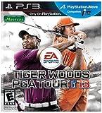 Tiger Woods PGA Tour 13 [import anglais]