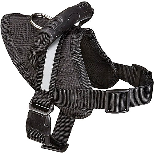 Guardian Gear Excursion Dog Harness, Large, Fits Chests 27
