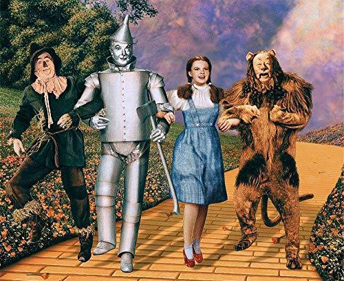 FFXXCC Kit de pintura digital 5D El mago de Oz, 3D para adultos, pintura por número, regalos para niños, mosaico de lienzo, pintura al óleo, decoración de pared sin marco (40 x 50 cm)