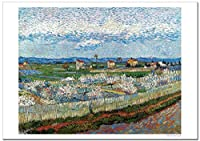 世界の名画 ゴッホ 花咲く桃の木々のあるクロー平野 ジークレー技法 高級ポスター (B3/364ミリ×515ミリ)