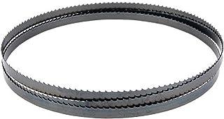DeWalt Bandsågblad för bandsåg DCS371NT (längd 835 mm, bredd: 12 mm, tjocklek: 0,5 mm, tanddelning: 1,8 mm) DT8460
