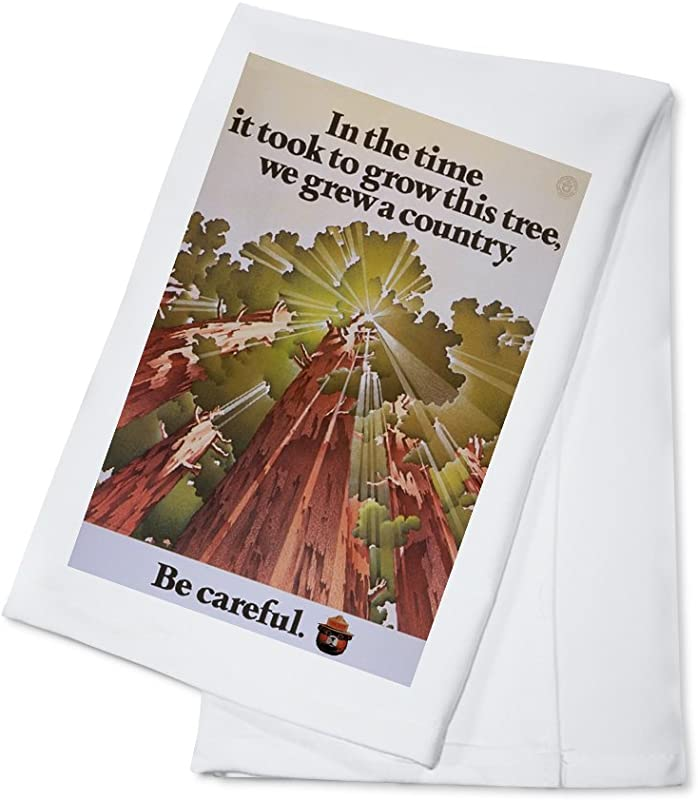 Smokey Bear Time It Took To Grow A Tree Vintage Poster 100 Cotton Kitchen Towel