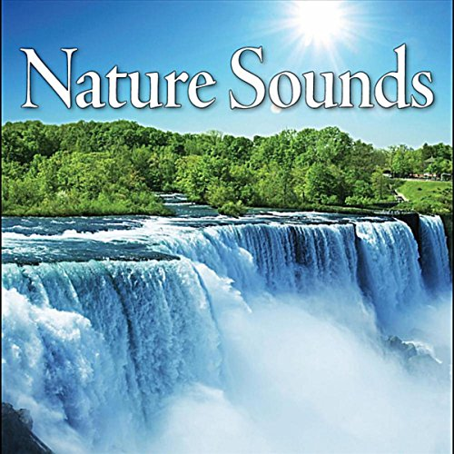 Nature Sounds – Secluded Ocean Wave Surf Crashing on a Rocky Shore Line