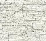 A.S. Création papel pintado Wood'n Stone gris blanco 10,05 m x 0,53 m 707161