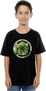 Marvel Niños Avengers Hulk Montage Symbol Camiseta