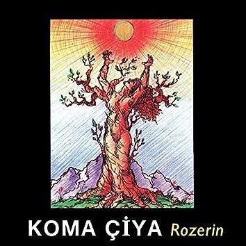 Rozerin