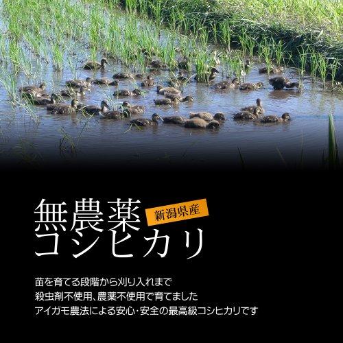 新潟コシヒカリ(アイガモ農法・無農薬米) 白米(精米) 5kg