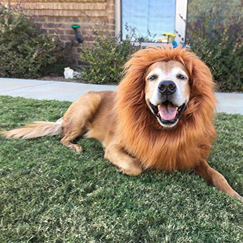 Lion Mane Costume for Dogs, Lion Dog Costume Funny...