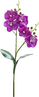 Clenp Flores artificiales decorativas - Flores artificiales orquídeas de mariposa DIY planta accesorios de pared decoració...