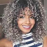 Pelucas de pelo rizado para mujeres negras, fibra sintética resistente al calor, pelo corto rizado negro, peluca de 15 pulgadas 220 g (gris) (WS707)