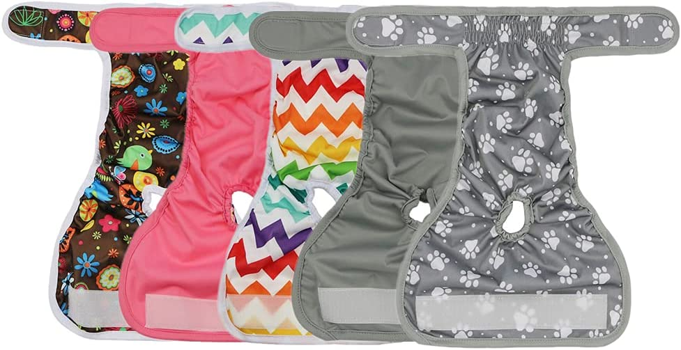 Qiny Washable Dog Diapers 5 Challenge the lowest price Durable Pack Doggie Diape At the price Premium