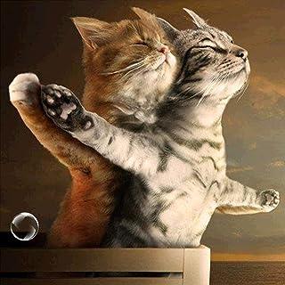 Titanic Jack en Rose Cat 5D DIY Diamond schilderij borduurwerk Cross Stitch decoraties