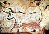Poster 70 x 50 cm: Höhle von Lascaux, Zweiter Stier von